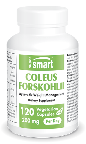 Coleus Forskohlii Supplement
