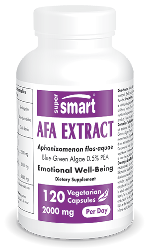 AFA Extract Supplement
