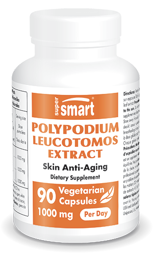 Polypodium leucotomos Extract 500 mg