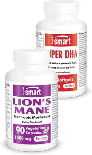 Lion's Mane + Super DHA