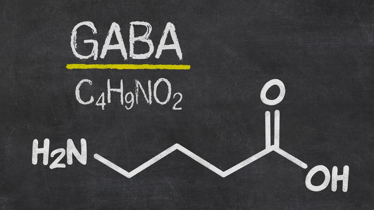 The neurotransmitter GABA: a natural stress-buster